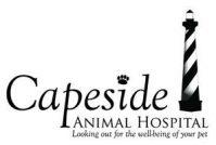 Capeside Animal Hospital