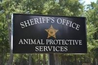 Brunswick County Sheriff's Office Animal Protection Services